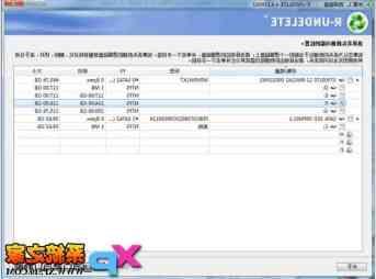 R-Undelete中文版(FAT/NTFS数据恢复软件) v4.9.160808 汉化中文版截图1