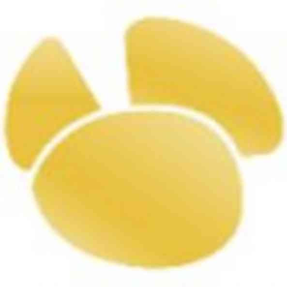 Navicat Premium(数据库管理) v13.3 简体中文版(32位/64位)
