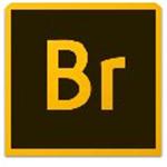 Adobe Bridge CC 2015 64位 简体中文版