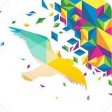 一个奇鸽app最新版