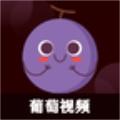 葡萄视频app官方版