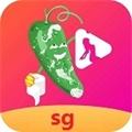 丝瓜视频app官方稳定版
